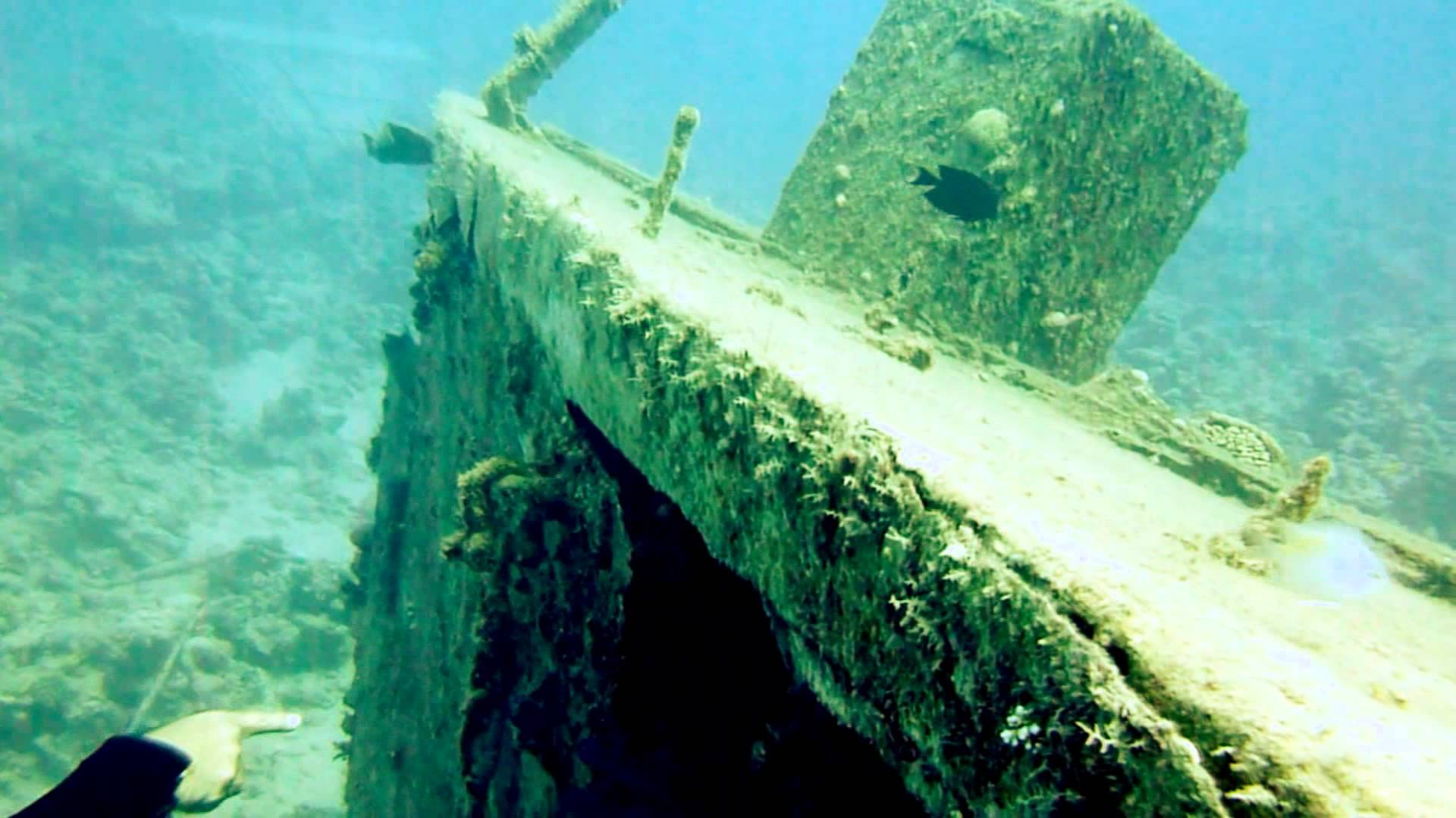 Susana Wreck - Egypt Tours Portal