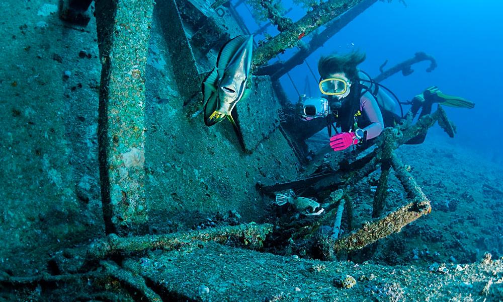 Abu Nuhas Shipwreck - Things to Do in Hurghada - Egypt Tours Portal