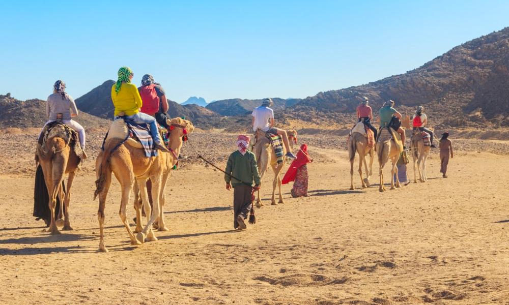 Riding Camels Hurghada Sahara - Things to Do in Hurghada - Egypt Tours Portal
