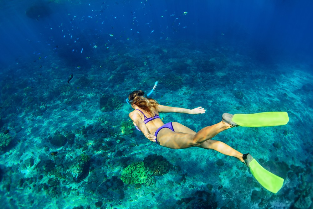 Snorkeling - Things to do in Hurghada - Egypt Tours Portal
