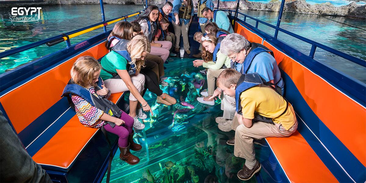 Enjoy A Glass Bottom Boat - Things To Do in Makadi Bay - Egypt Tours Portal