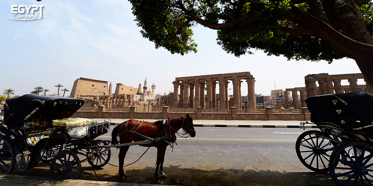 Horse Carriage - How to Spend a Night in Luxor - Egypt Tours Portal