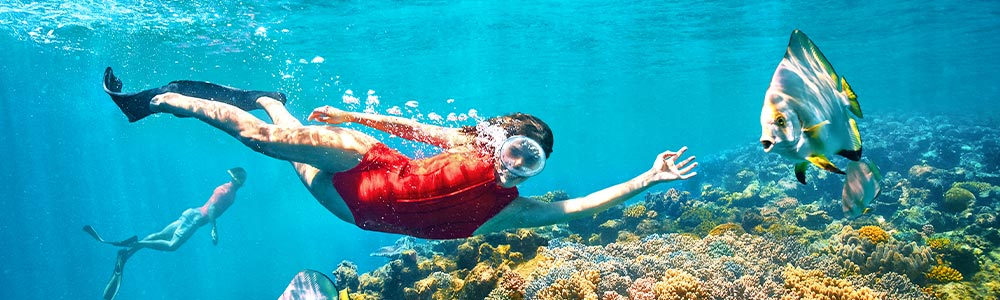 Tour Itinerary:Makadi Bay Excursion Private Snorkeling Trip