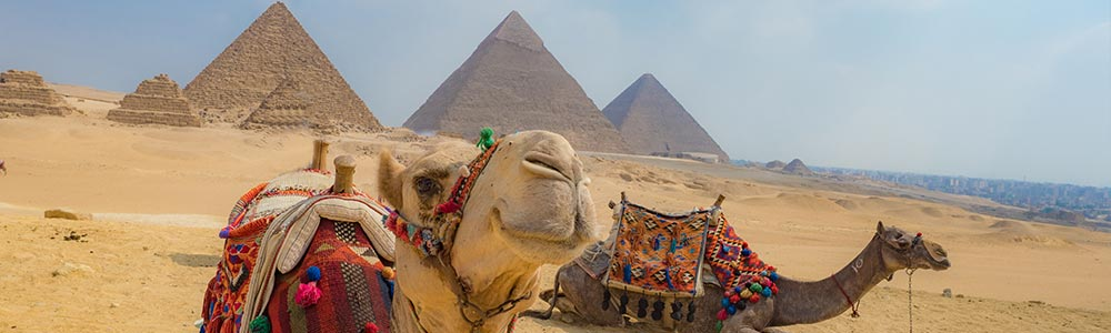 Day Two:Tour to The Pyramids and Memphis City - Fly to Luxor