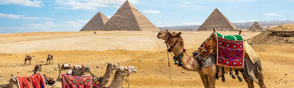 Day Two:Enjoy a M  lange of History & Art in the Egyptian Pyramids