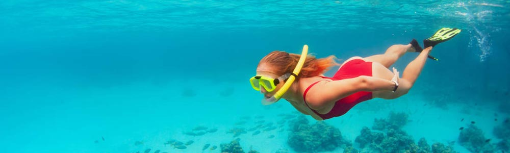 Day Seven:Snorkeling Adventure in the Red Sea