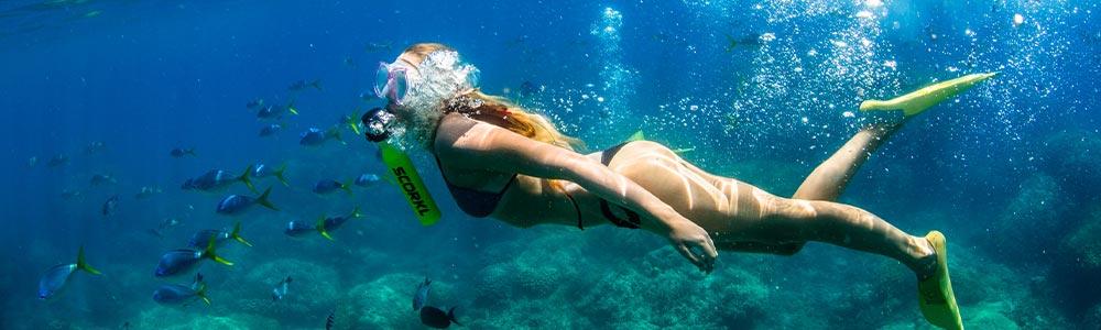 Day 8:Enjoy A Snorkeling Trip
