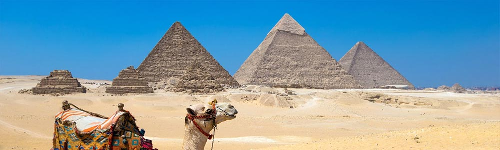 Day Two:Gaze at the Pyramids of Giza & Memphis City